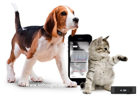 internet-of-things-pets