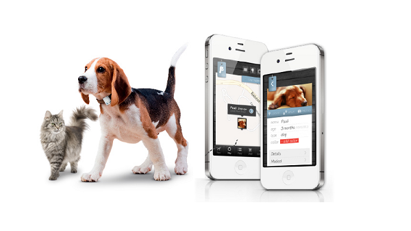 iot-pet-tracking-products