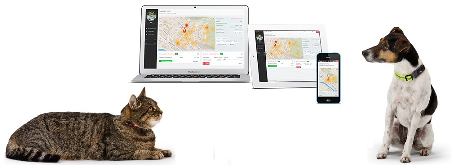 pet-tracking-technology