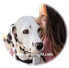 tractive-pet-tracking-contact