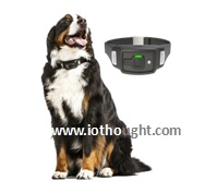 voyce-pet-tracking-contact-