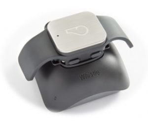 whistle-pet-tracking-iothought-5